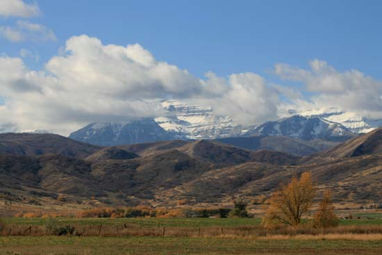 fall-backside-timp000